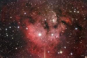 NGC 7822 Cederblad 214
